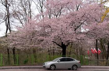 Picturesque parking spot
