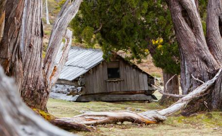 Dixon's Hut
